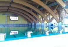 перегордка в бассейн